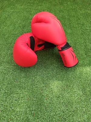 gants de boxe krav maga lunel